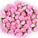 Grace Flowerbox Erfahrungen + 50 Euro Amazon Gutschein Gratis